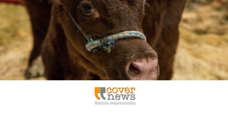 Centro de negocios y promoción de la genética bovina y ovina